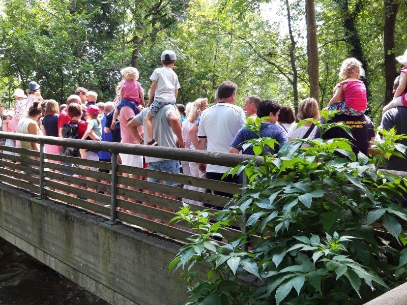 Juli: Entenrennen - Warten auf die Enten in der Würm